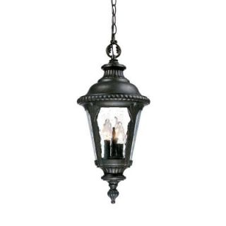 Acclaim Lighting Surrey Collection Hanging Lantern 3 Light Outdoor Black Gold Light Fixture 7216BG