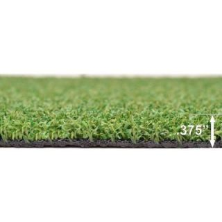 Turf Evolutions 12 ft. x 75 ft. TruGrass Luxury Spring Indoor/Outdoor Green Artificial Turf TGLLRcom