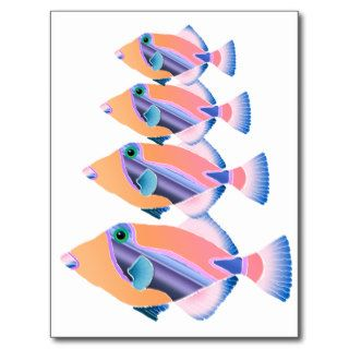 Orange and Blue Tropical Fish Post Cards