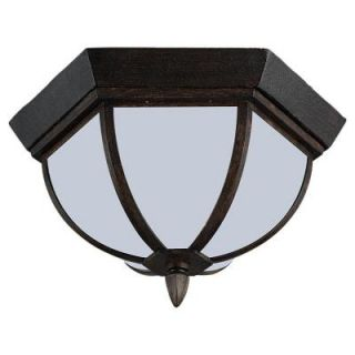 Sea Gull Lighting Ardsley Court Hanging/Ceiling Mount 2 Light Outdoor Textured Rust Patina Pendant Fixture 79136BLE 08