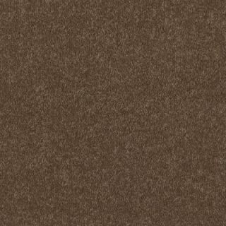 TrafficMASTER Lamont II   Color Chocolate Cake 12 ft. Carpet HDB6161708