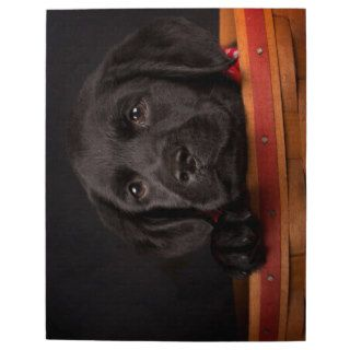 Black labrador retriever puppy in a basket puzzle