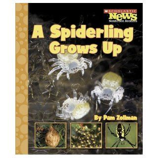 A Spiderling Grows Up (Scholastic News Nonfiction Readers Animal Life Cycles) Pam Zollman 9780516249469 Books