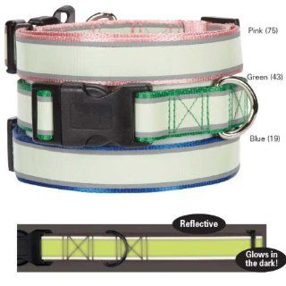 Casual Canine Glow Nylon Dog Collar, 14 to 20 Inch, Pink  Pet Collars