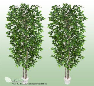TWO 7' Artificial Silver Birch Trees with Real Wood Trunks