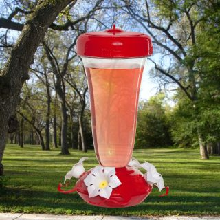 Primrose Hummingbird Feeder   Bird Feeders