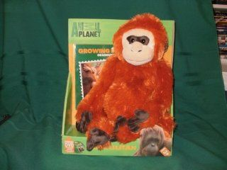 Animal Planet Growing up Orangutan Stuffed Toy with DVD Toys & Games