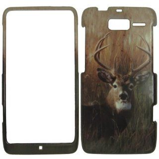 Motorola Droid Razr M XT907   Deer on Grass Camo Camouflage Hunting Shinny Gloss Finish Hard Plastic Cover, Case, Easy Snap On, Faceplate. Cell Phones & Accessories