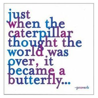 """Just When The Caterpillar Thought The World Was Over. Color Magnet"" Kitchen & Dining"