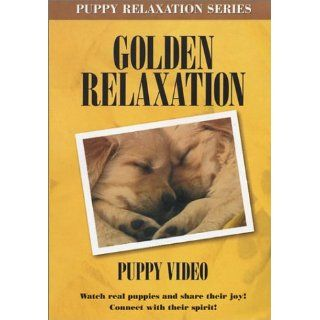 Golden Relaxation Puppy DVD Golden Retriever Puppies, Janice Maxwell Movies & TV
