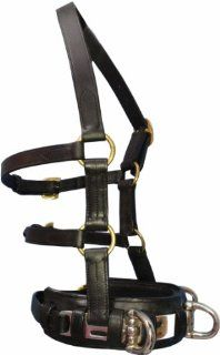 Full Size Horse Leather Lunging Cavesson with Bit Straps. Heavy Duty Steel Rings. Padded Noseband. Double Throat latch Design Keeps it Stable on Horse's Head. Probably the Best Leather Lunge Cavesson Available for Horses.  Horse Halters  Sports &