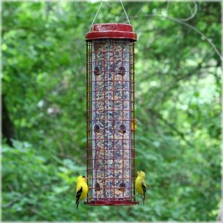 Perky Pet Wild Bird Easy Feeder Patio & Outdoor Decor