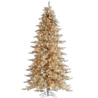 5' Pre Lit Layered Platinum Gold Frasier Fir Artificial Christmas Tree Clear Lit