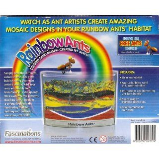 Ant Habitat   Rainbow Ant Farm with Colored Sands and Live Ant Coupon Included Toys & Games