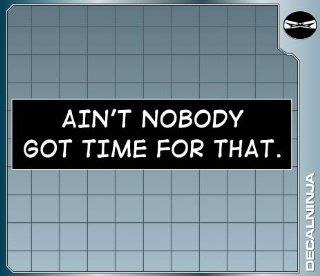AIN'T NOBODY GOT TIME FOR THAT Funny Bumper Sticker Car Truck Laptop Decal  Other Products