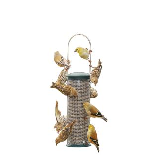 Aspects Metal Squirrel Resistant Tube Bird Feeder