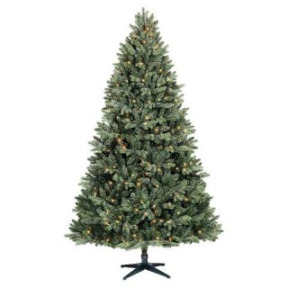 ft. Pre Lit Philips Balsam Fir Artificial Christmas Tree  Clear