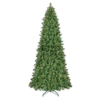 10.5 ft. Pre Lit Douglas Fir Artificial Christmas Tree  Clear Lights