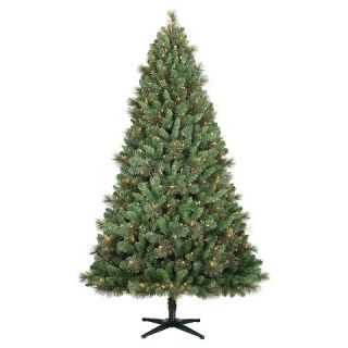ft. Pre Lit Gold Glitter Philips Balsam Fir Artificial Christmas